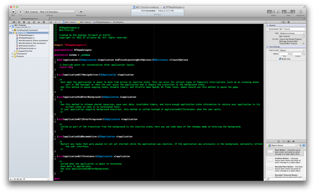 Xcode main window for application